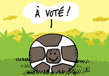 Georges Weah remporte l'élection présidentielle au Libéria