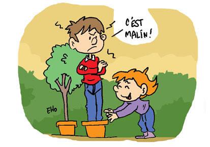 Près de Dijon, la forêt des enfants s'agrandit