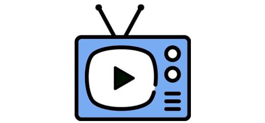 Les émissions de télévision dans lesquelles apparaît l'association Les petits citoyens