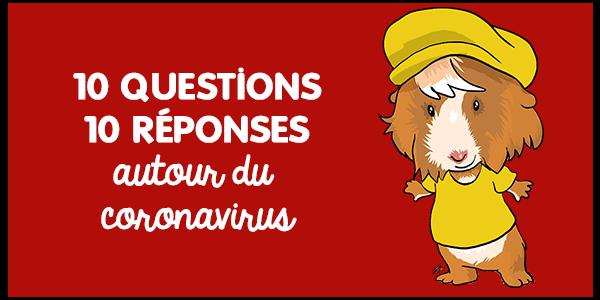 10 questions 10 réponses