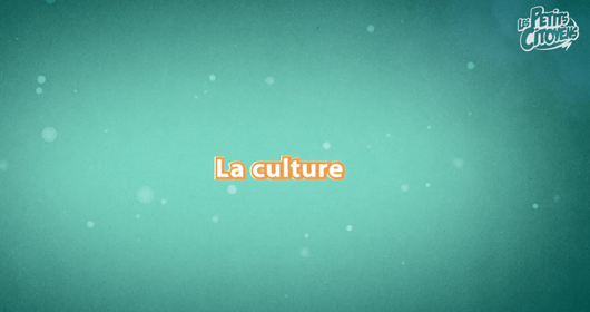 video_culture