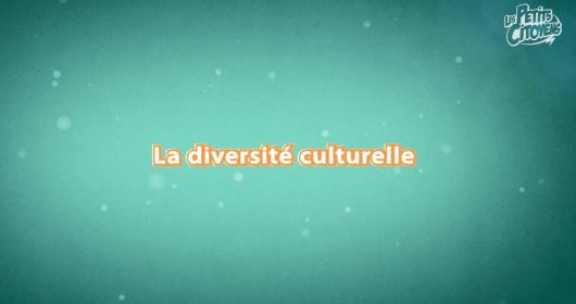 video_diversite_culturelle